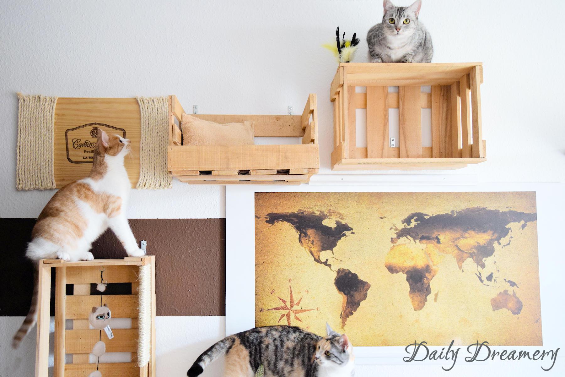 wohnungskatzen richtig halten diy kletterwand aus alten weinkisten anzeige daily dreamery. Black Bedroom Furniture Sets. Home Design Ideas