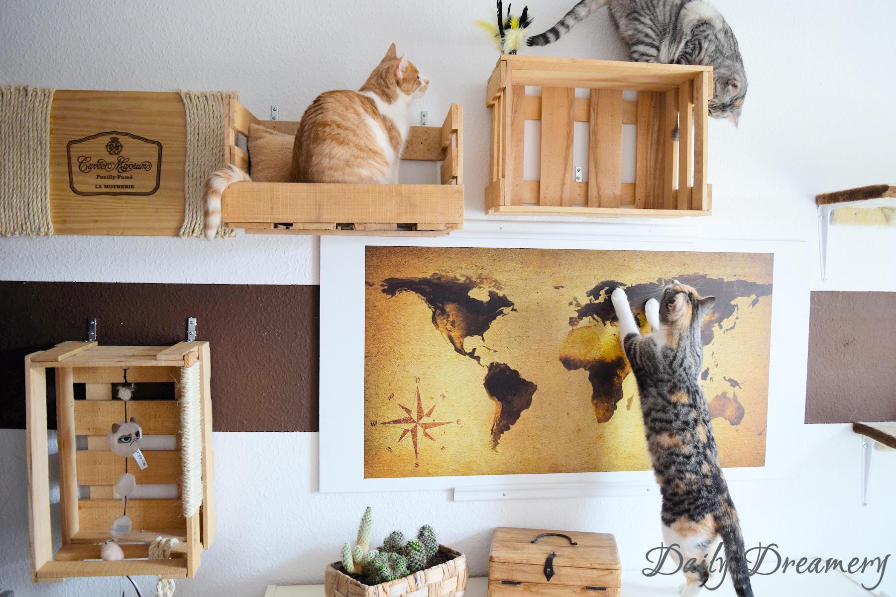 Turbo DIY-Katzenspielzeug-Kletterwand-Wohnungskatzen-Purina-12 – Daily DP98
