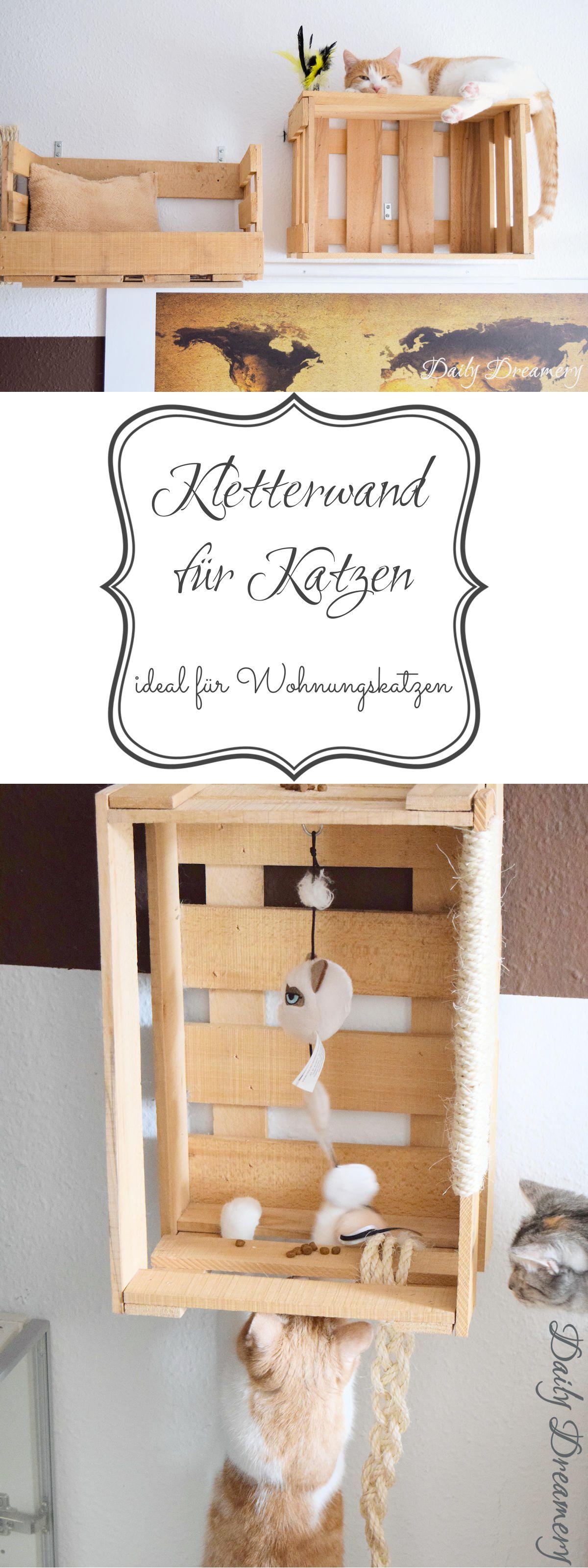 DIY-Kletterwand für Katzen ganz einfach aus alten Weinkisten bauen - perfekt für Wohnungskatzen #diy #katzen #katzenmöbel
